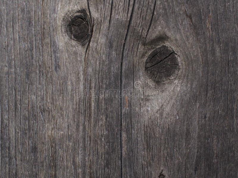 Υπόβαθρο του ξεπερασμένου κέδρου στοκ εικόνες