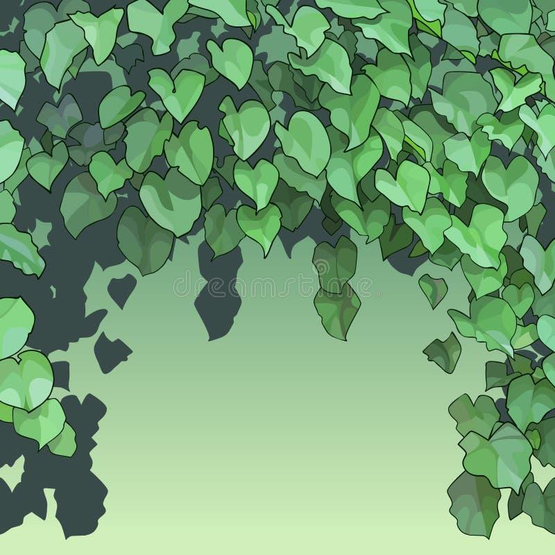 Υπόβαθρο του πυκνού πράσινου φυλλώματος διανυσματική απεικόνιση