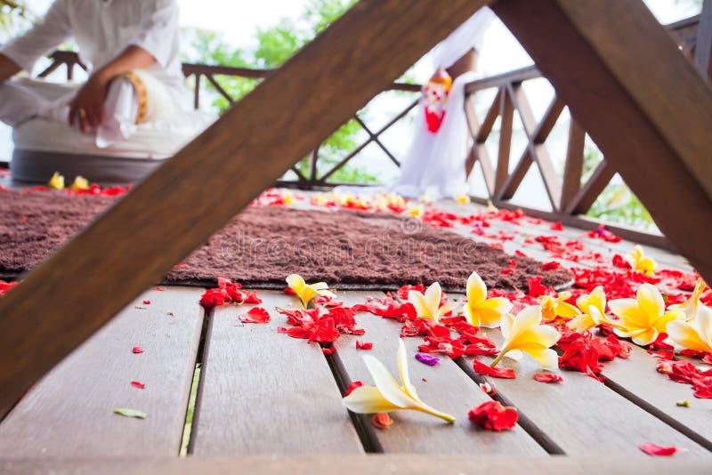 Υπόβαθρο των λουλουδιών frangipani στοκ εικόνα
