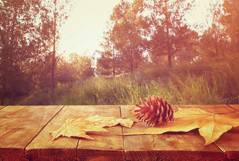Υπόβαθρο φθινοπώρου των πεσμένων φύλλων πέρα από τον ξύλινους πίνακα και το δάσος backgrond με τη φλόγα και το ηλιοβασίλεμα φακών στοκ φωτογραφία