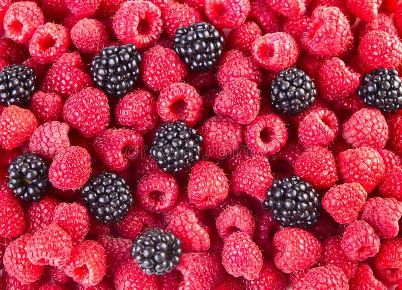 Υπόβαθρο φρούτων στοκ εικόνα με δικαίωμα ελεύθερης χρήσης