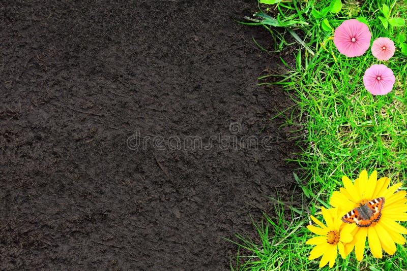 Υπόβαθρο φύσης με την πράσινα χλόη και το χώμα στοκ εικόνα με δικαίωμα ελεύθερης χρήσης