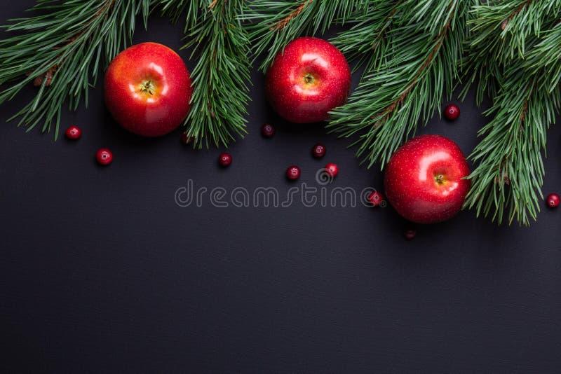 Υπόβαθρο Χριστουγέννων με τους κλάδους δέντρων, τα κόκκινα μήλα και τα τα βακκίνια Σκοτεινός ξύλινος πίνακας στοκ φωτογραφία με δικαίωμα ελεύθερης χρήσης
