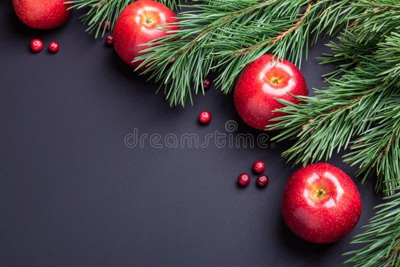 Υπόβαθρο Χριστουγέννων με τους κλάδους δέντρων, τα κόκκινα μήλα και τα τα βακκίνια Σκοτεινός ξύλινος πίνακας στοκ φωτογραφία