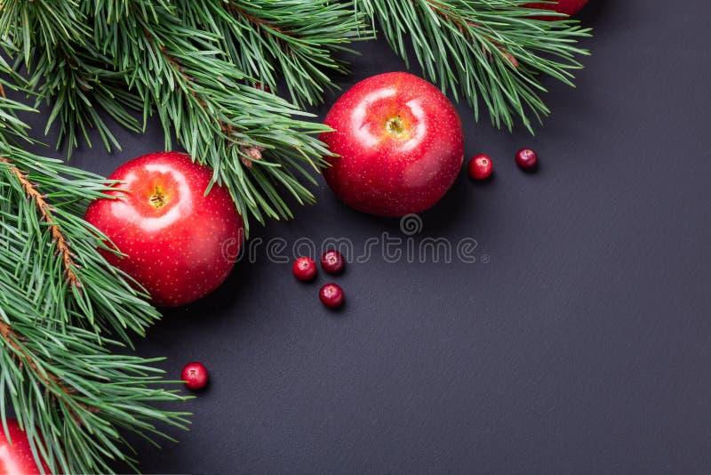 Υπόβαθρο Χριστουγέννων με τους κλάδους δέντρων, τα κόκκινα μήλα και τα τα βακκίνια Σκοτεινός ξύλινος πίνακας στοκ φωτογραφίες με δικαίωμα ελεύθερης χρήσης