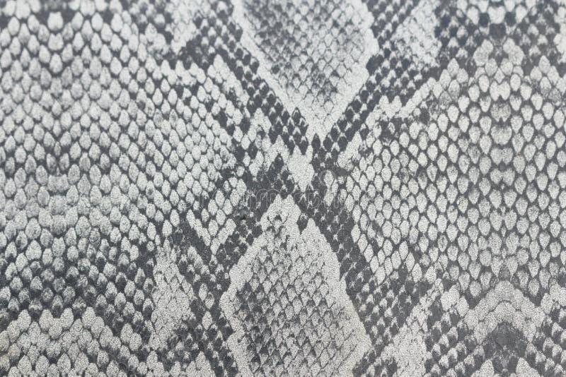 Υπόβαθρο Dray φιαγμένο από δέρμα ενός φιδιού ή δέρμα ενός ερπετού, χρώμιο στοκ εικόνα με δικαίωμα ελεύθερης χρήσης