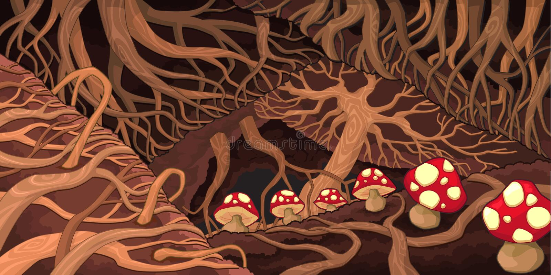 Υπόγεια με τις ρίζες και τα μανιτάρια. διανυσματική απεικόνιση