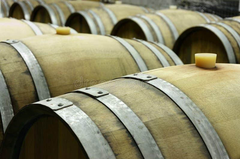 Υπόγειο κελάρι κρασιού με τις σειρές των ξύλινων βαρελιών 3 στοκ εικόνες
