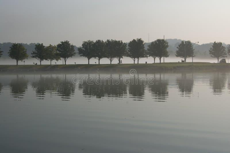 Υπόλοιπος κόσμος των δέντρων που απεικονίζει στη λίμνη στο ομιχλώδες πρωί στοκ εικόνες
