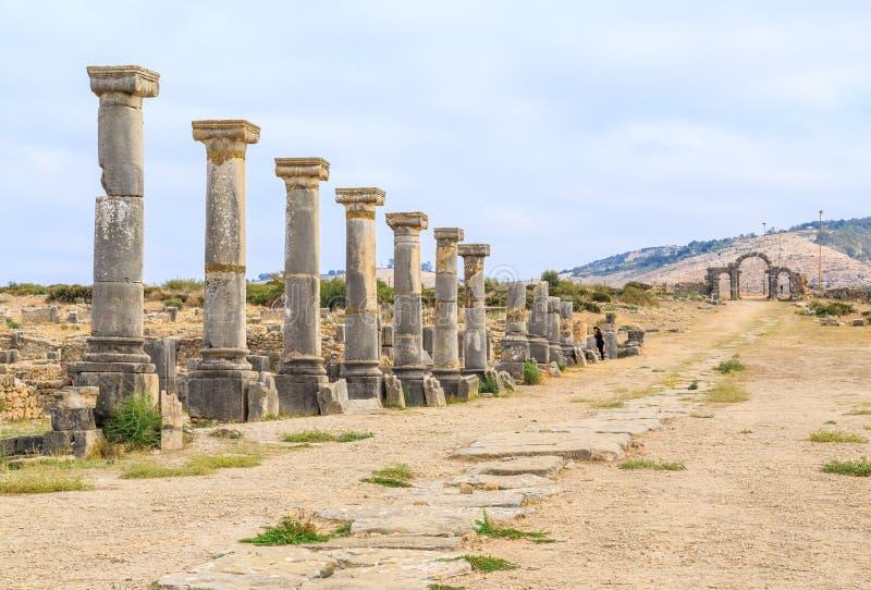 Υπόλοιπος κόσμος των στυλοβατών στις καταστροφές Volubilis, αρχαία ρωμαϊκή πόλη στο Μαρόκο στοκ φωτογραφία με δικαίωμα ελεύθερης χρήσης