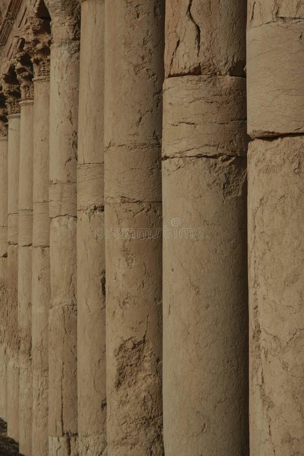 Υπόλοιπος κόσμος των στηλών σε Palmyra στοκ φωτογραφίες