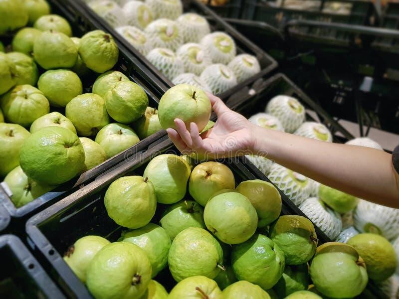 Υψηλή άποψη γωνίας του μαζέματος με το χέρι φρέσκων πράσινων φρούτων γκοϋαβών στην υπεραγορά στοκ εικόνα