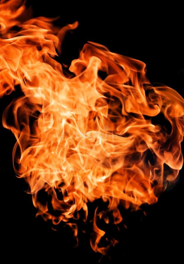 υψηλή αύξηση φλογών πυρκα&gam στοκ εικόνα