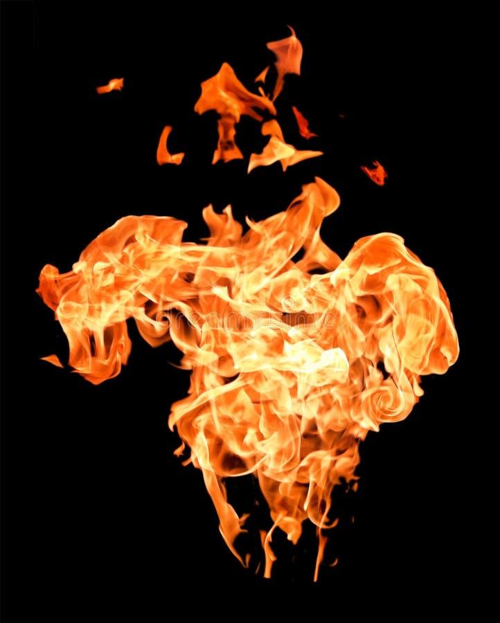 υψηλή αύξηση φλογών πυρκα&gam στοκ φωτογραφία με δικαίωμα ελεύθερης χρήσης
