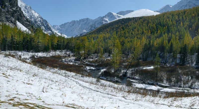 υψηλή ορεινή κοιλάδα στοκ εικόνες με δικαίωμα ελεύθερης χρήσης