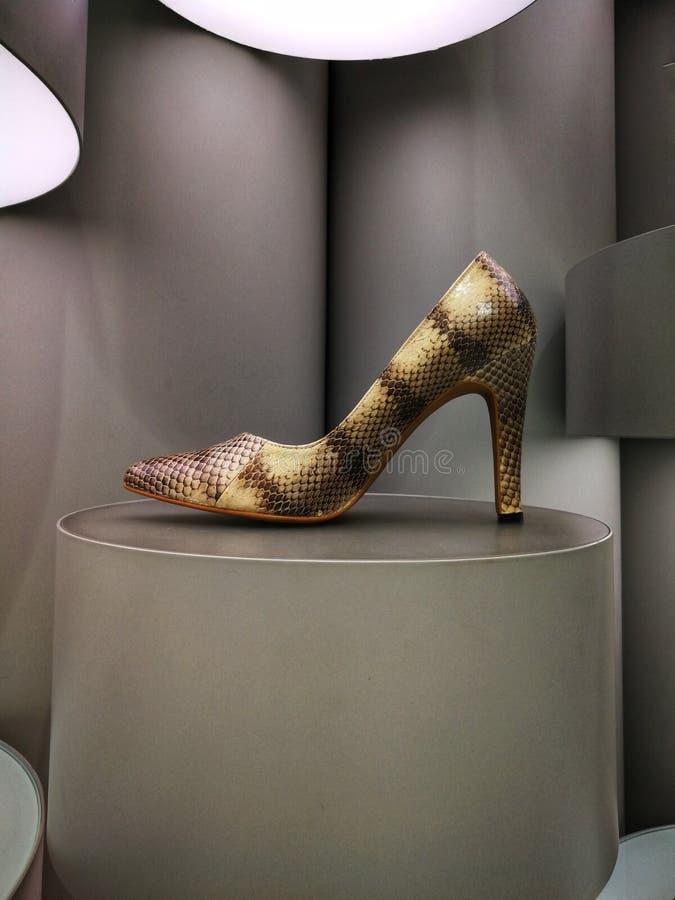 Υψηλό παπούτσι τακουνιών δέρματος φιδιών στην επίδειξη στοκ εικόνες