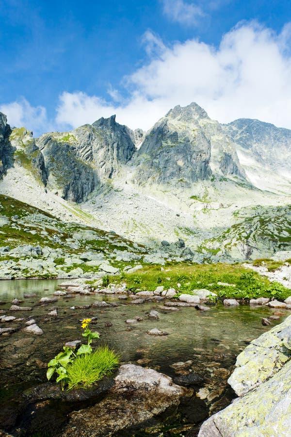 Download Υψηλό Tatras, Σλοβακία στοκ εικόνες. εικόνα από ευρώπη - 22781348