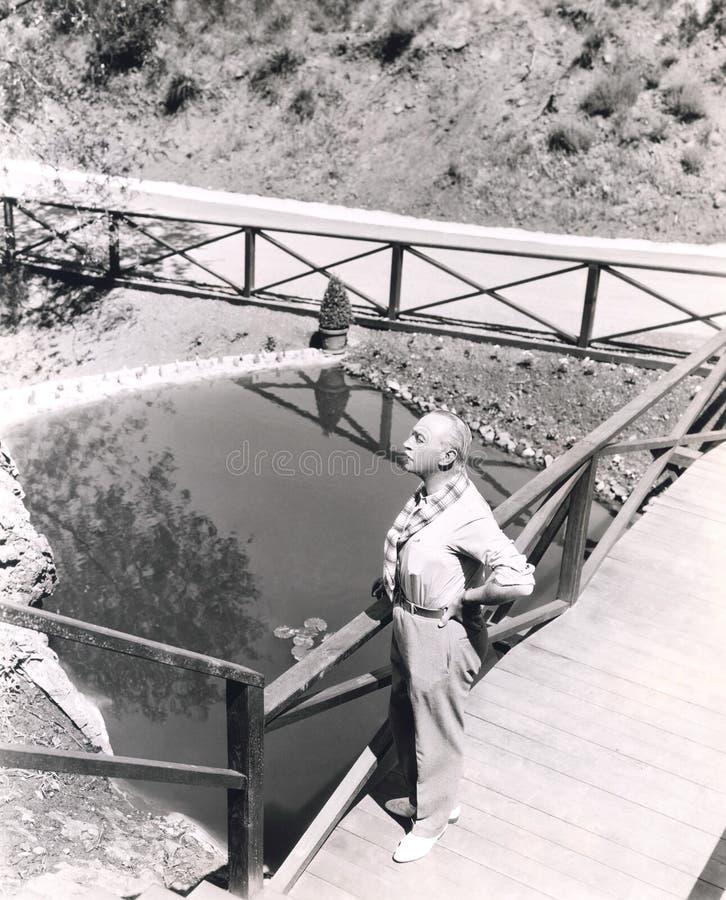 Υψηλή άποψη γωνίας του ατόμου που στέκεται στη γέφυρα που αγνοεί τη λίμνη στοκ εικόνες