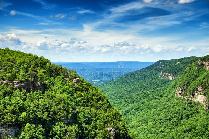 Υψηλή άποψη του κρατικού πάρκου φαραγγιών Cloudland στοκ φωτογραφίες