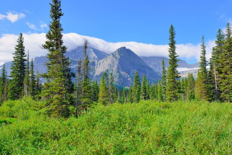 Υψηλό αλπικό τοπίο στο ίχνος παγετώνων Grinnell στο εθνικό πάρκο παγετώνων, Μοντάνα στοκ εικόνες