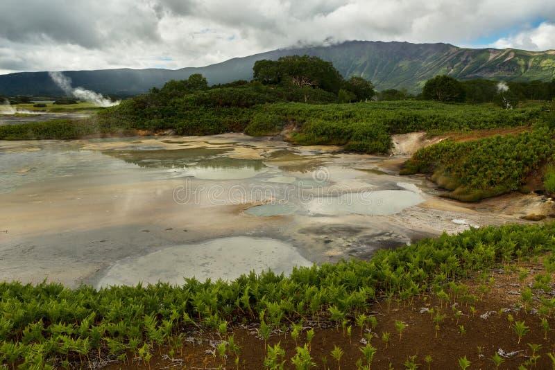 Υδροθερμικός τομέας Caldera Uzon Επιφύλαξη φύσης Kronotsky στοκ φωτογραφίες με δικαίωμα ελεύθερης χρήσης