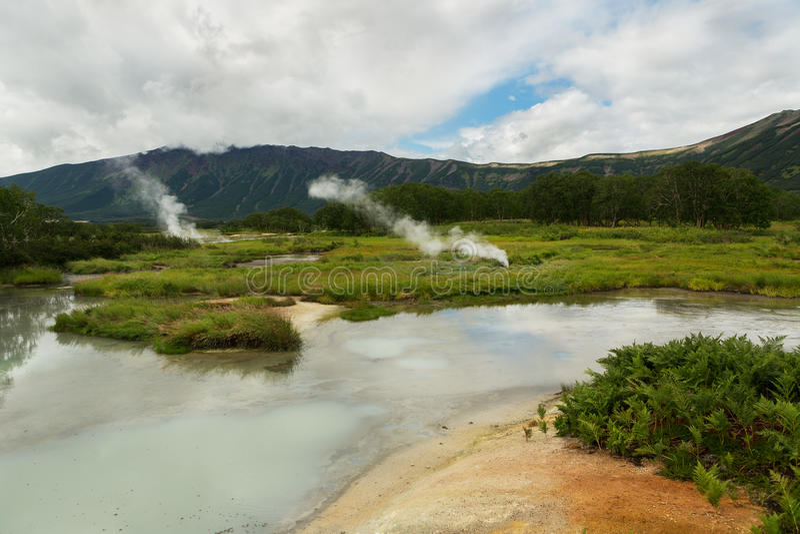 Υδροθερμικός τομέας Caldera Uzon Επιφύλαξη φύσης Kronotsky στοκ φωτογραφία
