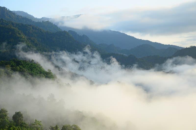 Υδρονέφωση και βουνά πρωινού στο Κα Phu Lang στοκ φωτογραφία