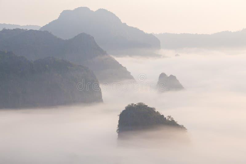 Υδρονέφωση πρωινού με το βουνό στοκ εικόνα
