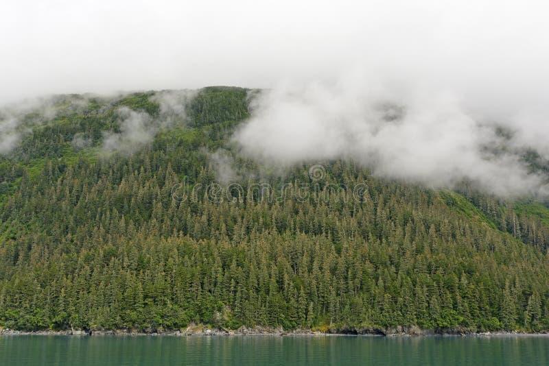 Υδρονεφώσεις πέρα από το παράκτιο τροπικό δάσος στοκ φωτογραφίες