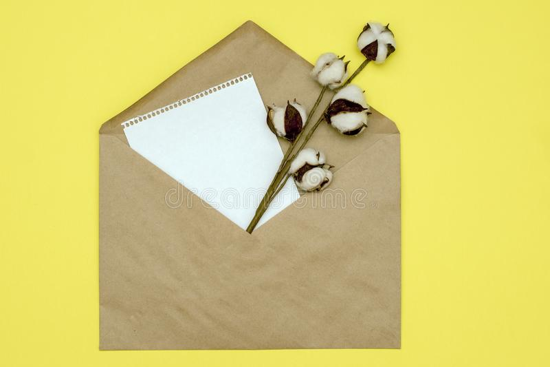 Φάκελος εγγράφου με μια σελίδα του εγγράφου και έναν κλάδο του βαμβακιού από το σε ένα κίτρινο υπόβαθρο Πρότυπο με το διάστημα αν στοκ εικόνα με δικαίωμα ελεύθερης χρήσης