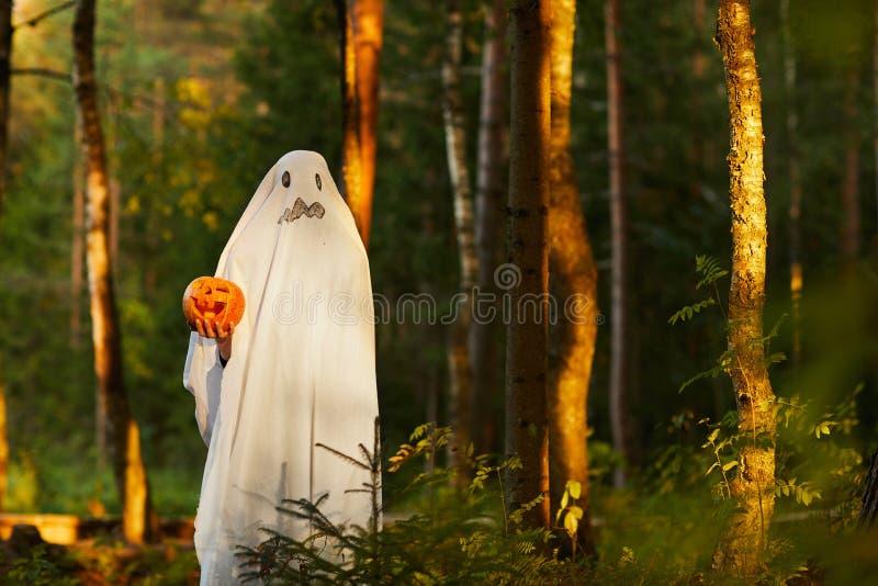 Φάντασμα στο δάσος στο ηλιοβασίλεμα στοκ φωτογραφία με δικαίωμα ελεύθερης χρήσης
