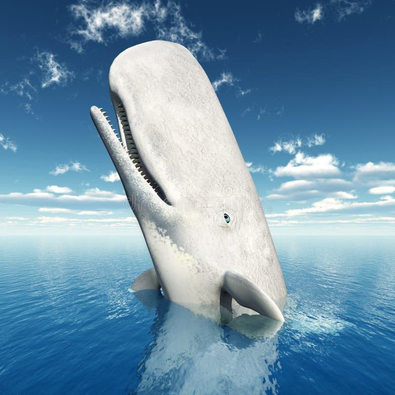 Φάλαινα σπέρματος διανυσματική απεικόνιση
