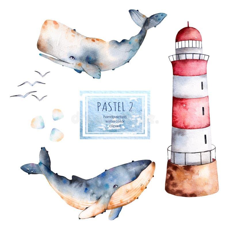 Φάλαινες, θαλασσινά κοχύλια και φάρος Watercolor ζωγραφισμένες στο χέρι στα χρώματα κρητιδογραφιών ελεύθερη απεικόνιση δικαιώματος