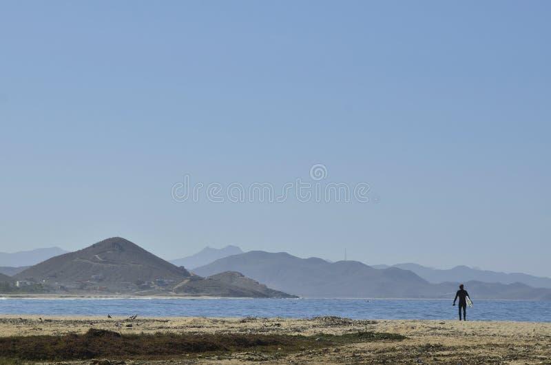 Φέρνοντας πίνακας κυματωγών ατόμων στο τοπίο Baja, Μεξικό ακτών παραλιών στοκ εικόνες