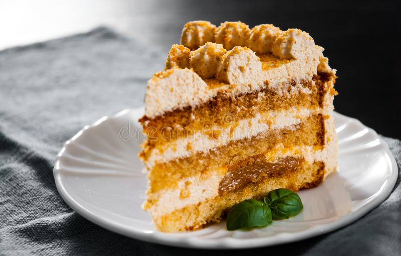 Φέτα του βαλμένου σε στρώσεις κέικ μελιού σε ένα πιάτο στοκ εικόνες με δικαίωμα ελεύθερης χρήσης