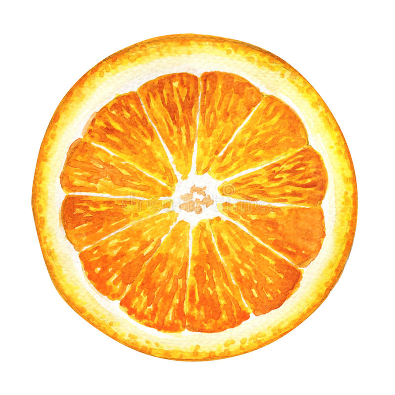 Φέτα του φρέσκου πορτοκαλιού που απομονώνεται στο άσπρο υπόβαθρο στοκ φωτογραφία