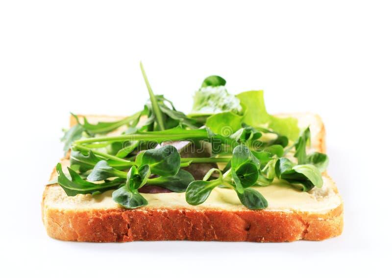 Φέτα του ψωμιού με τα φρέσκα πράσινα σαλάτας στοκ φωτογραφίες