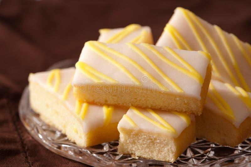 φέτες λεμονιών κέικ στοκ εικόνα