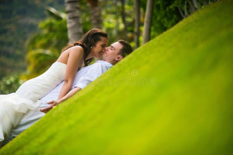 Φίλημα Newlyweds στην πράσινη χλόη στοκ εικόνες με δικαίωμα ελεύθερης χρήσης