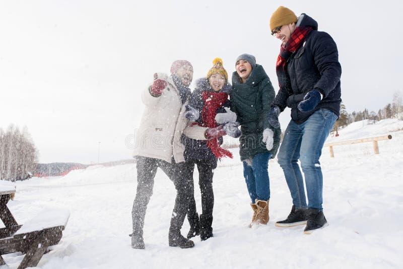 Φίλοι που έχουν τη διασκέδαση στο χιόνι στοκ εικόνα με δικαίωμα ελεύθερης χρήσης