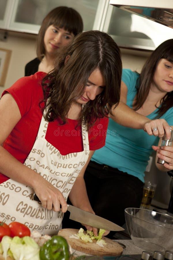 Download Φίλοι που μαγειρεύουν από κοινού Στοκ Εικόνες - εικόνα από ευτυχία, teamwork: 17053268