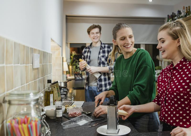 Φίλοι που προετοιμάζουν τα τρόφιμα για ένα κόμμα στοκ εικόνες