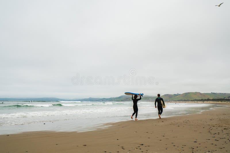 Φίλοι που φορούν στα υγρά κοστούμια με τις ιστιοσανίδες τους που περπατούν στην παραλία στοκ εικόνες με δικαίωμα ελεύθερης χρήσης