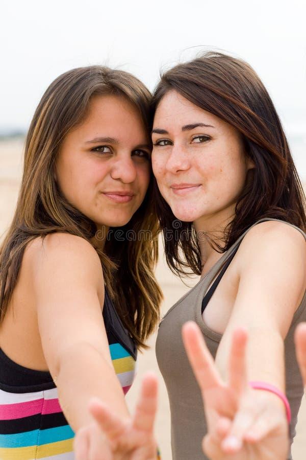 φίλοι gril στοκ εικόνα με δικαίωμα ελεύθερης χρήσης