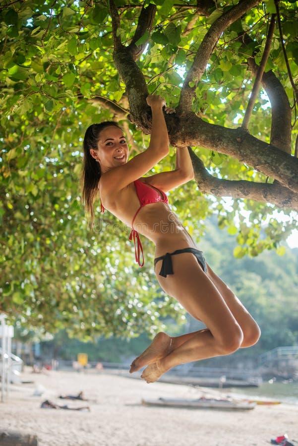 Φίλαθλη λεπτή νέα γυναίκα που φορά το μπικίνι που αναρριχείται στο δέντρο σε μια αμμώδη παραλία στο θέρετρο Χαμογελώντας καυκάσιο στοκ εικόνα με δικαίωμα ελεύθερης χρήσης