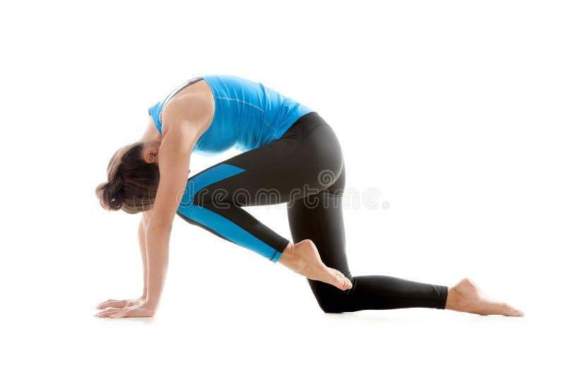 Φίλαθλο κορίτσι που κάνει τη ρυθμική γυμναστική στοκ εικόνες με δικαίωμα ελεύθερης χρήσης