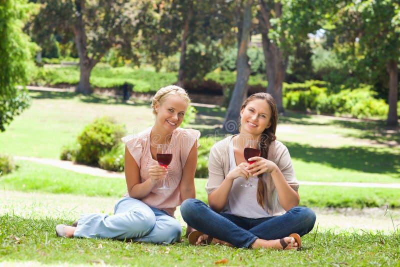 Φίλοι με τα γυαλιά κρασιού στο πάρκο στοκ φωτογραφία με δικαίωμα ελεύθερης χρήσης