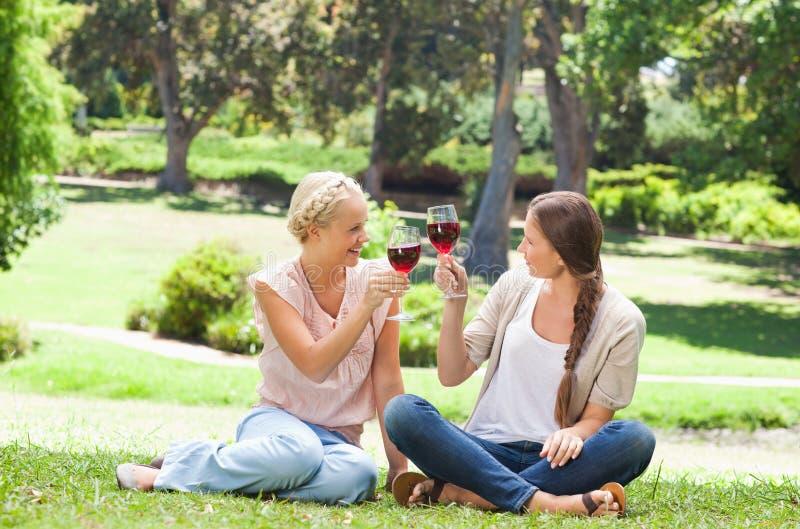 Φίλοι που έχουν ένα ποτήρι του κόκκινου κρασιού στο πάρκο στοκ εικόνες