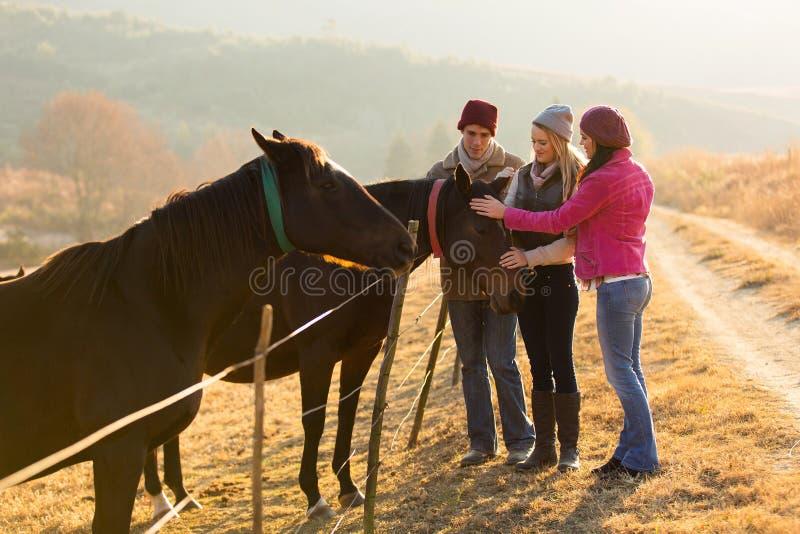 Φίλοι που τα άλογα στοκ εικόνες