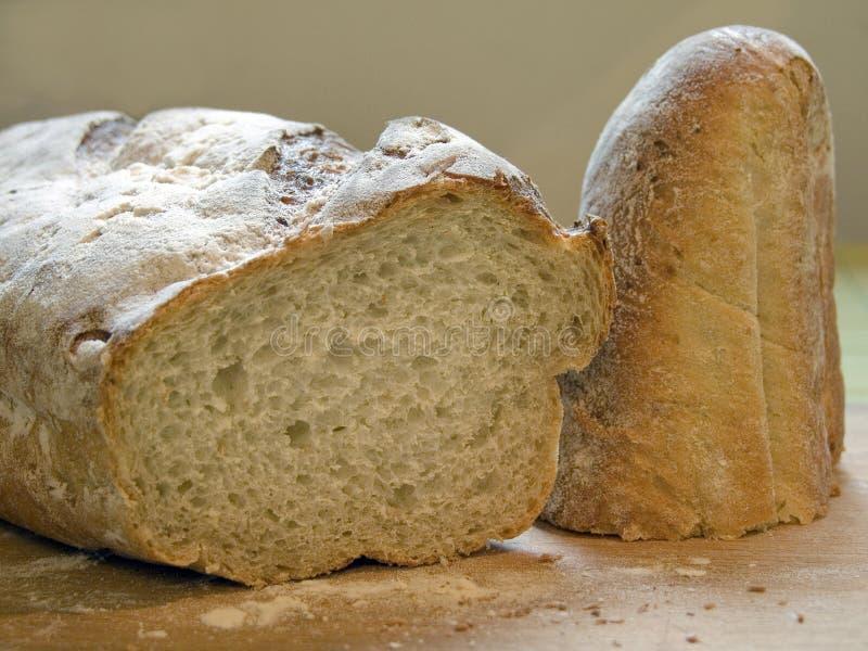 φαγόπυρο ψωμιού στοκ εικόνα με δικαίωμα ελεύθερης χρήσης